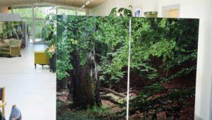 Trennwände 120x180 cm mit ganzseitigem Motiv (ohne Rand) / 2-teilig