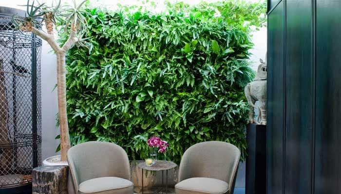 Indendørs planter i venterum på hospital / plejehjem