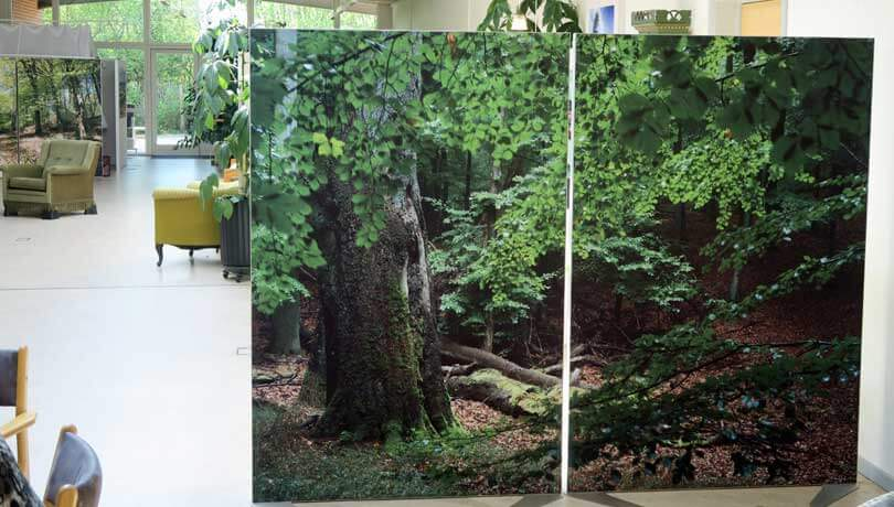 Skærmvægge 120x180 cm med fuldt motiv fordelt over to sektioner