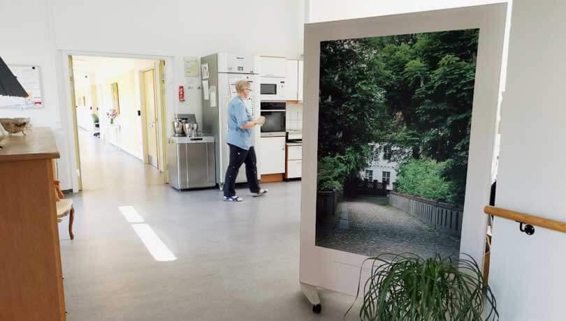Skærmvægge 120x180 cm med hvid kant og højt motiv