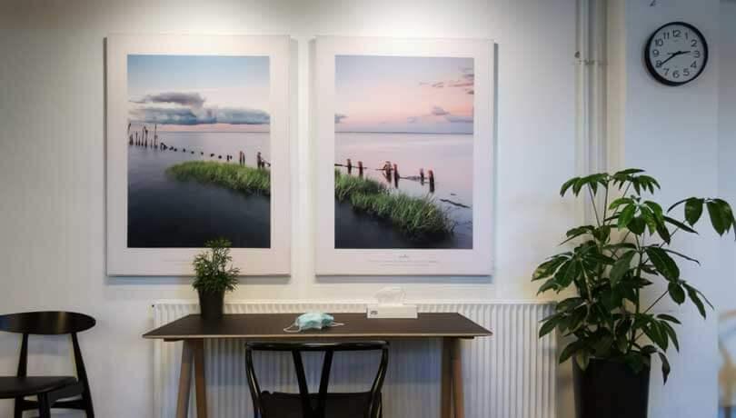 Kunst og planter i et venteværelse hos praktiserende læge