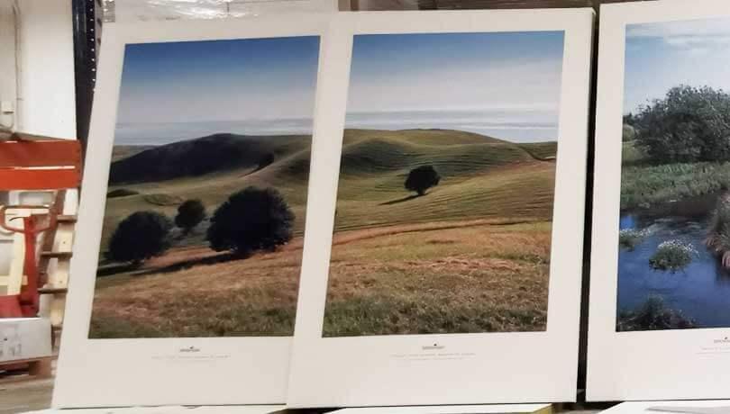 Skærmvægge 120x180 cm med helt motiv og hvid kant over to sektioner